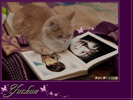 yuchun-kabe - コピー.jpg